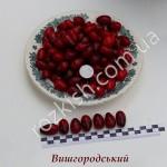 Вишгородський